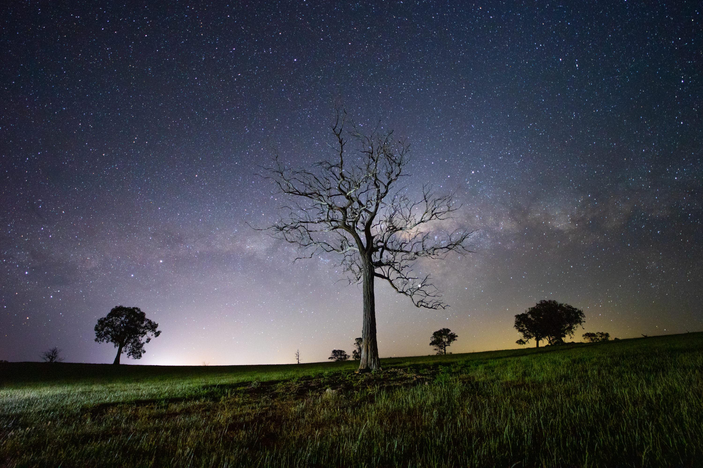 Samyang Af 14mm F2 8 Rf Review Nightscape Photographer